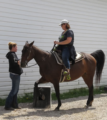 Employees at Cindy's Riding Stable